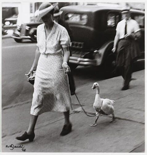 Octubre. «Promenade», Ruth Jacobi.